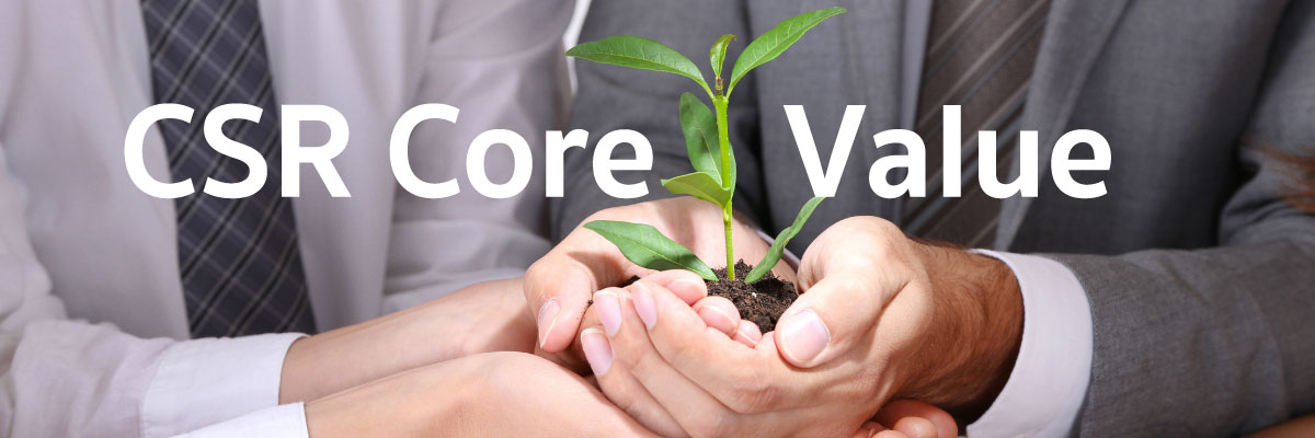 csr consulting core value header image